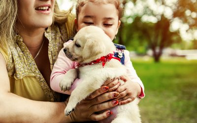 10 Reasons Pets Are Good for Kids